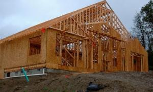House framing mold prevention